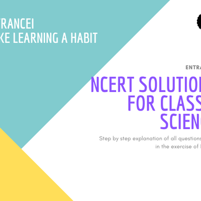 Why are ncert solutions important for class 7 Science?