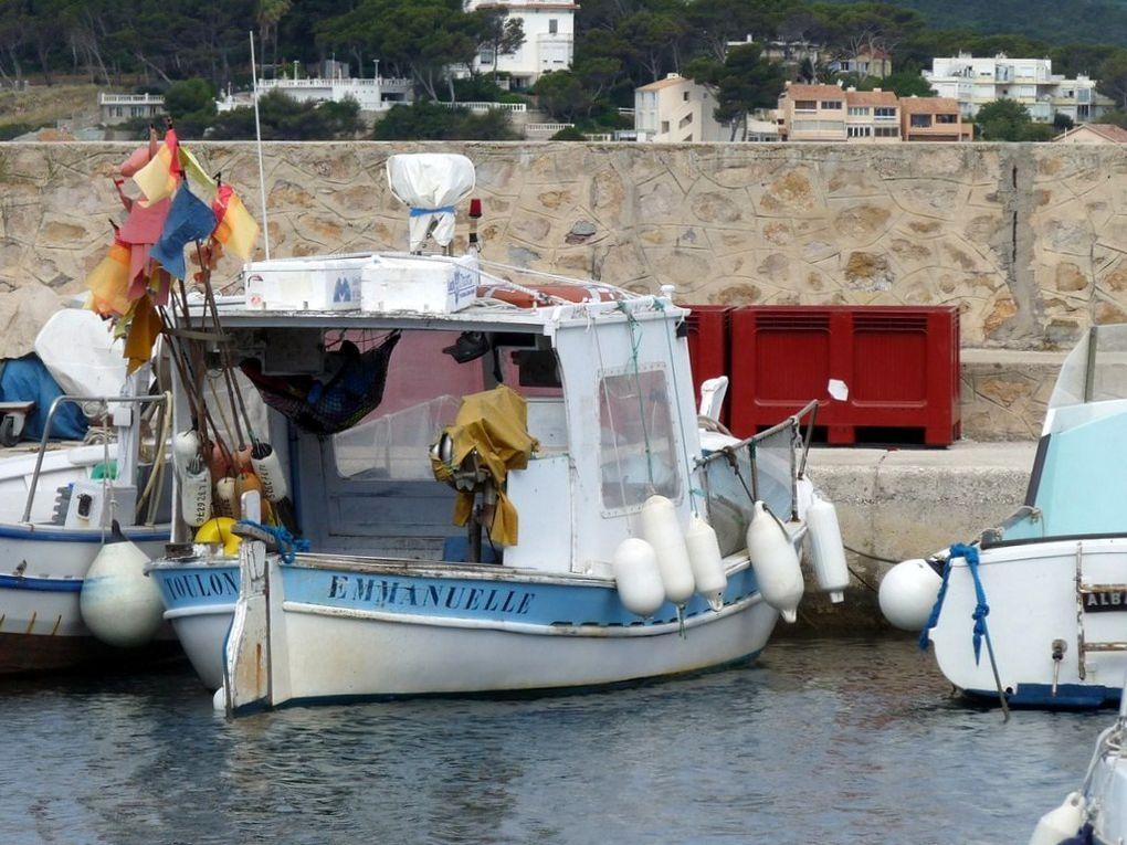 EMMANUELLE  TL326276 , dans le port de Saint Elme