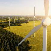 Les énergies renouvelables ont-elles un impact sur la biodiversité ?