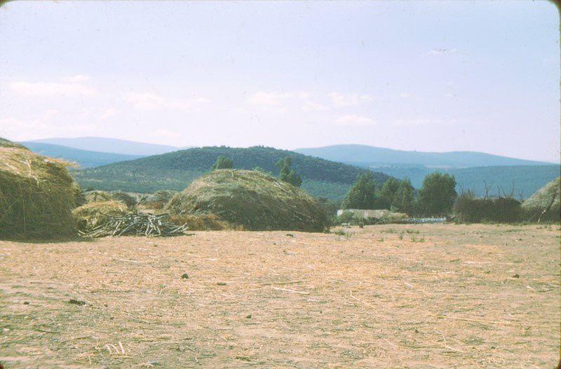 images de la zone est Constantinoise.