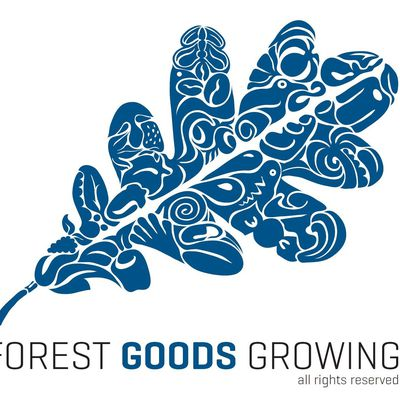 Le blog de Forest Goods Growing