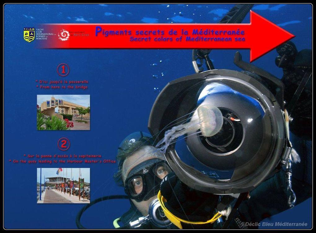 Exposition créée par Déclic Bleu Méditerranée pour le port de Bormes les Mimosas. En association avec le Yacht Club de Bormes et la mairie.