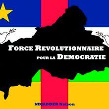 Centrafrique: nous demandons en urgence la démission du gouvernement actuel