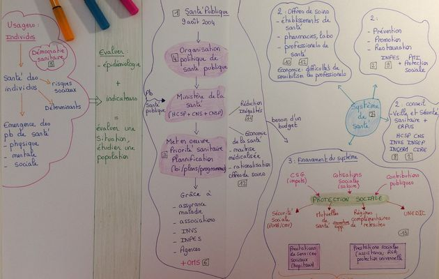 Synthèse globale STSS (sur la partie : politique de santé publique)