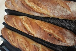Le pain sur poolish