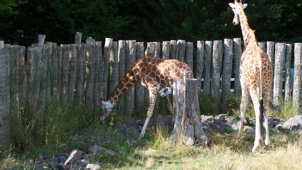 Photo personnel du parc et de son zoo