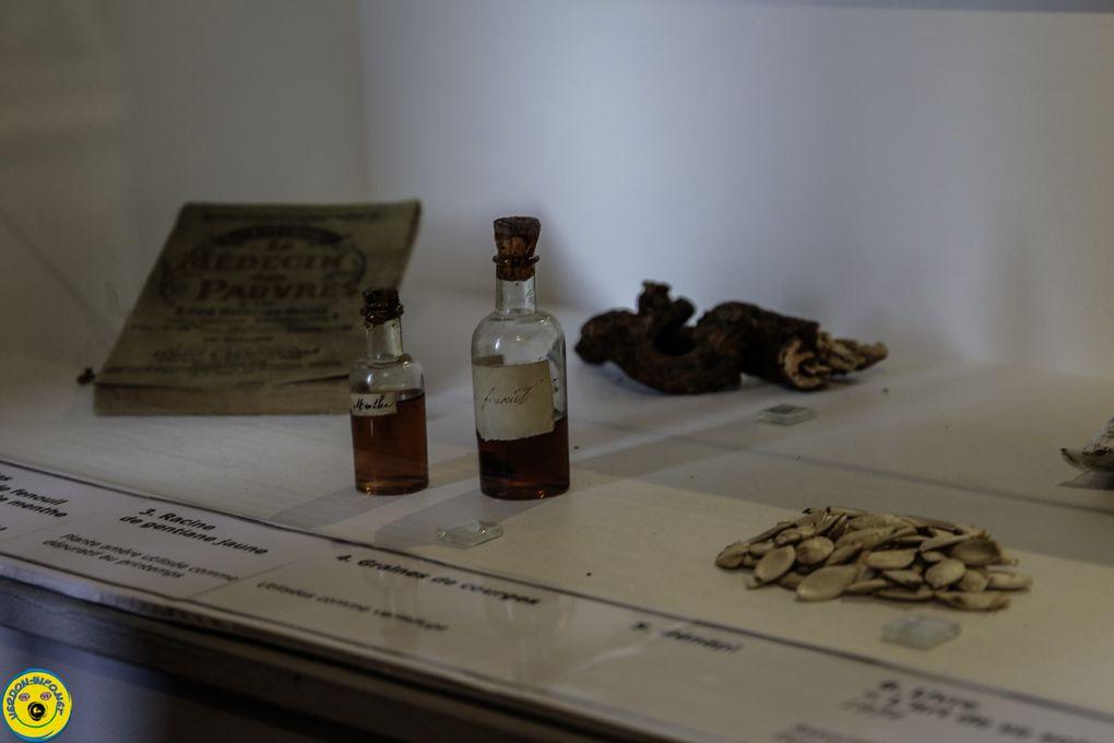 """Castellane  : Maison Nature et Patrimoine inauguration de l'exposition  """"des plantes et des hommes"""""""