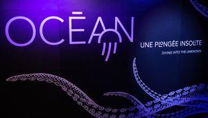 Exposition Océan une plongée insolite jusqu'au 5 janvier 2020 à la grande Galerie de l'évolution du Museum National d'Histoire Naturelle