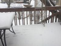 et encore une fois... la neige