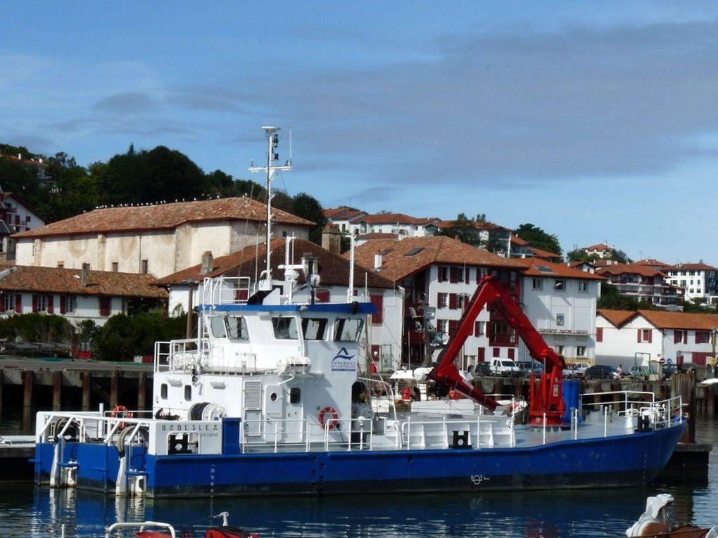 BABESLEA , dans le port de Saint Jean de Luz