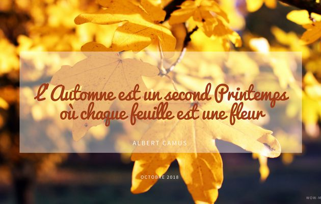 Fond d'écran Octobre 2018 { #freebies }