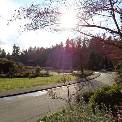 Spaziergang im Stanley Park