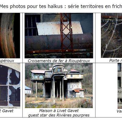 Mes photos pour tes haïkus : série TERRITOIRES EN FRICHE