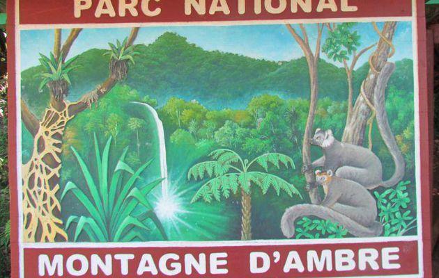 Madagascar - les parcs de la Montagne d'Ambre et de l'Ankarana - 6 au 8 mars 2013