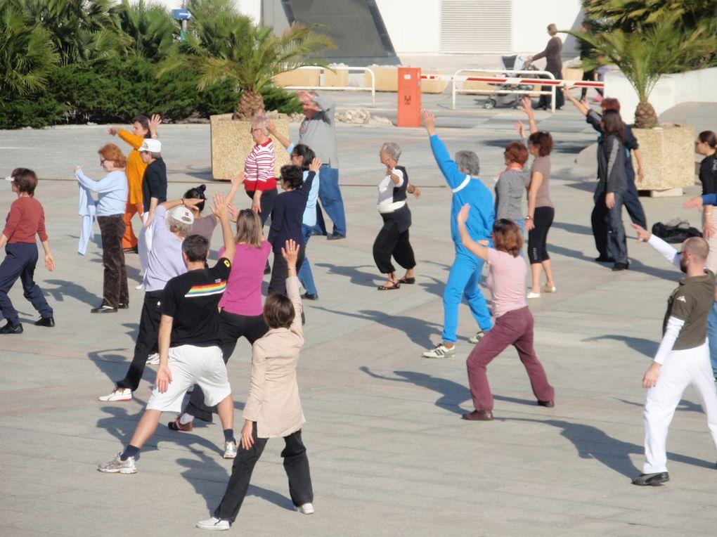 Sport et Santé : au service des retraités à Nice face au Musée des Arts Asiatiques