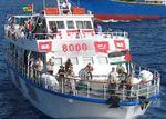 Flottille-Après le forfait des islamistes-martyrs de l'IHH turque pour la cause , il reste les idiots utiles - Vidéo