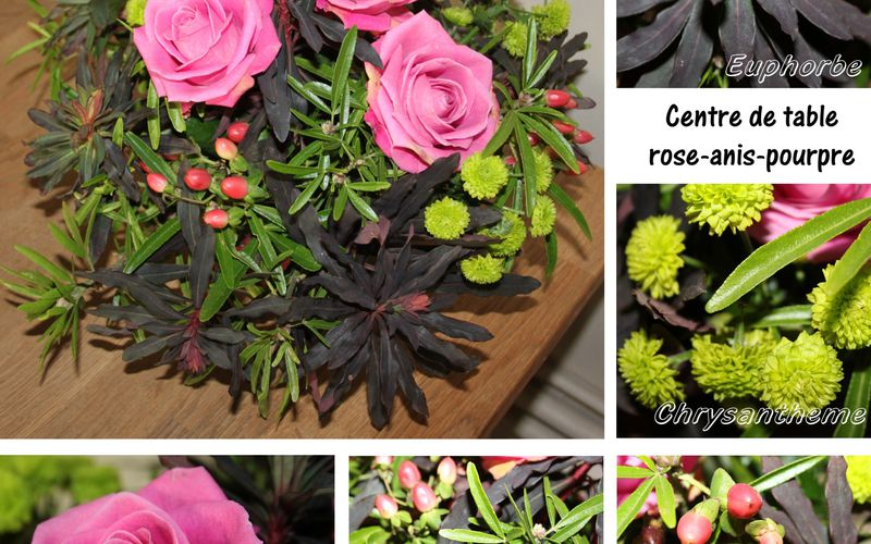 Composition rose-anis-pourpre