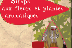 Les-sirops-Delicieux-sortileges
