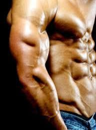 The TOP three lean mass steroids from online - roidspro