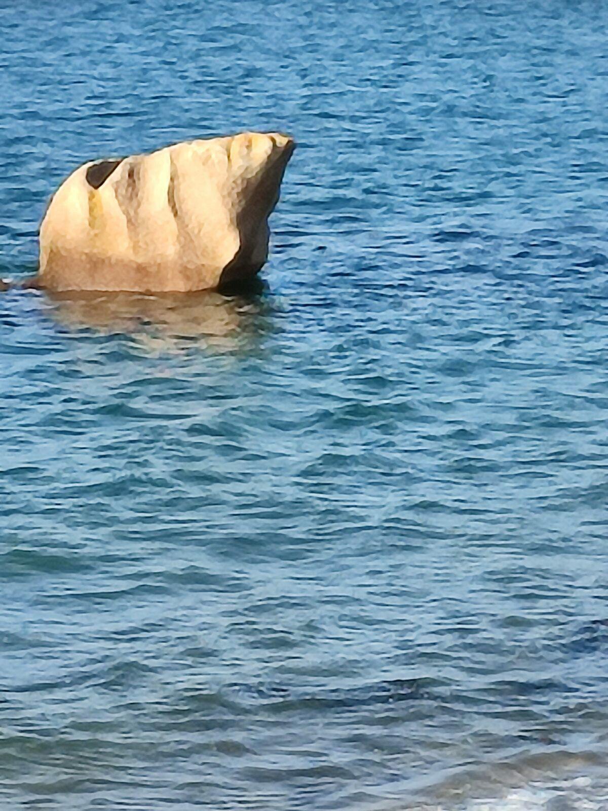 Iceberg~
