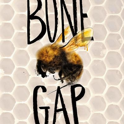 Bone Gap (by Laura Ruby)