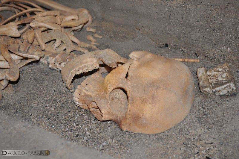 Détails du niveau de l'Antiquité avec une sépulture.