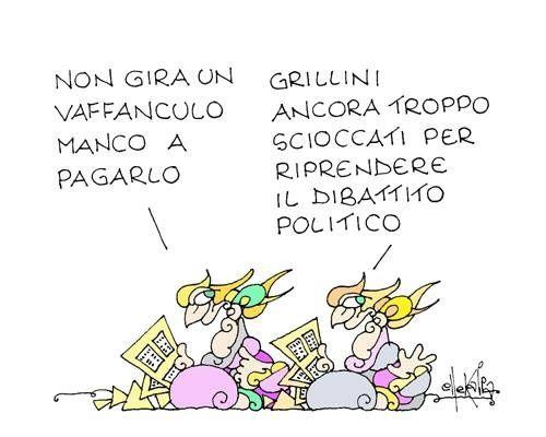 Perché Grillo ha decisamente stufato...