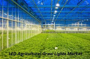 LED Agricultural Grow Lights Market: Segmentation & Key Futuristic 2018 – 2023