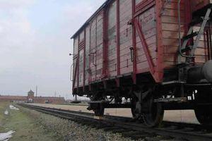 """Roumanie : l'un des derniers survivants des """"trains de la mort"""" nazis meurt du Covid-19"""