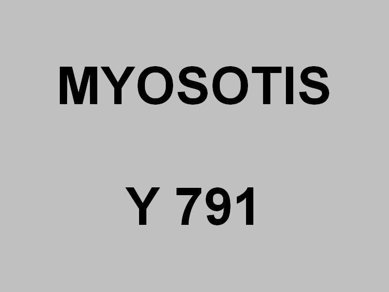 MYOSOTIS  , Y791 , vedette de support de plongeurs en petite rade le 08 mai 2019