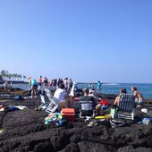 Première journée à Dolphinville, Big Island, Hawaii - Communications VIP Sylvie Bibeau