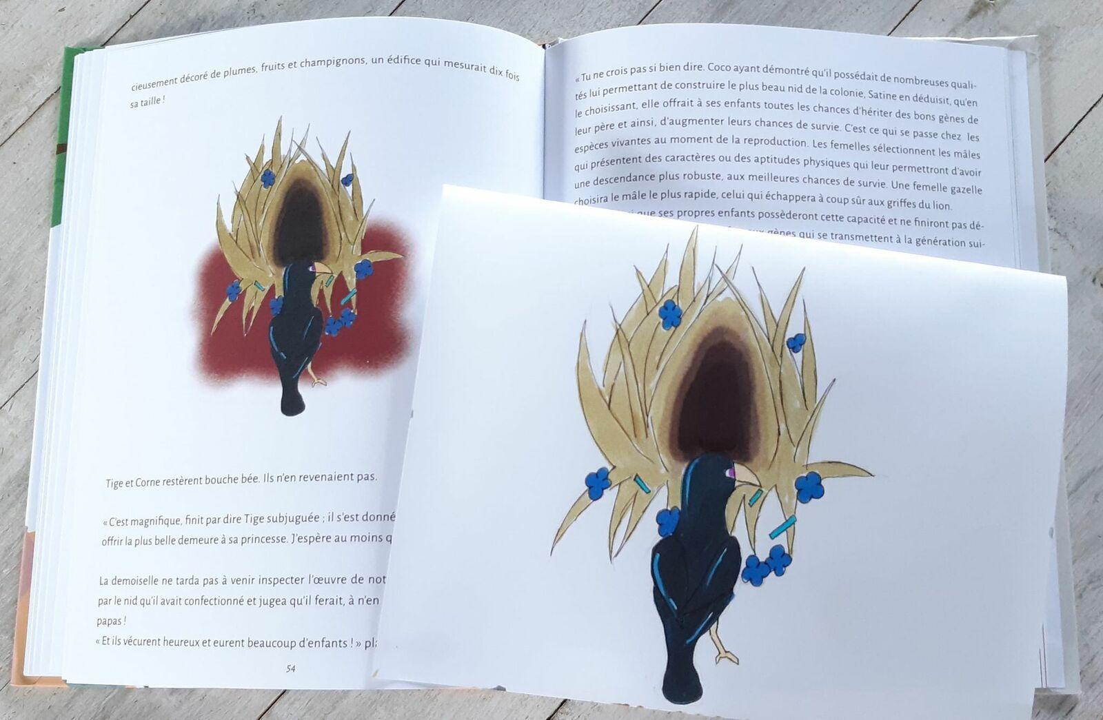 Une adhérente Passetemps illustre un livre pour enfants