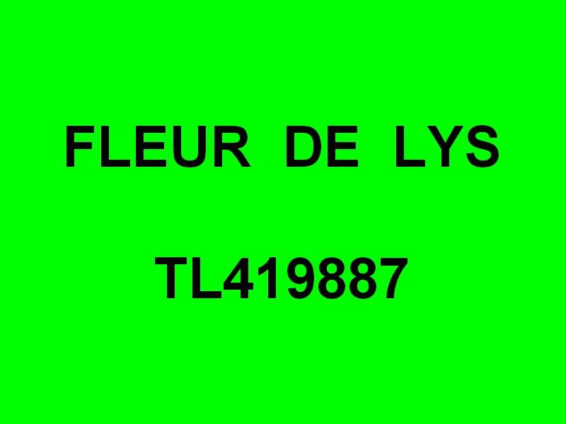 FLEUR DE LYS  TL419887