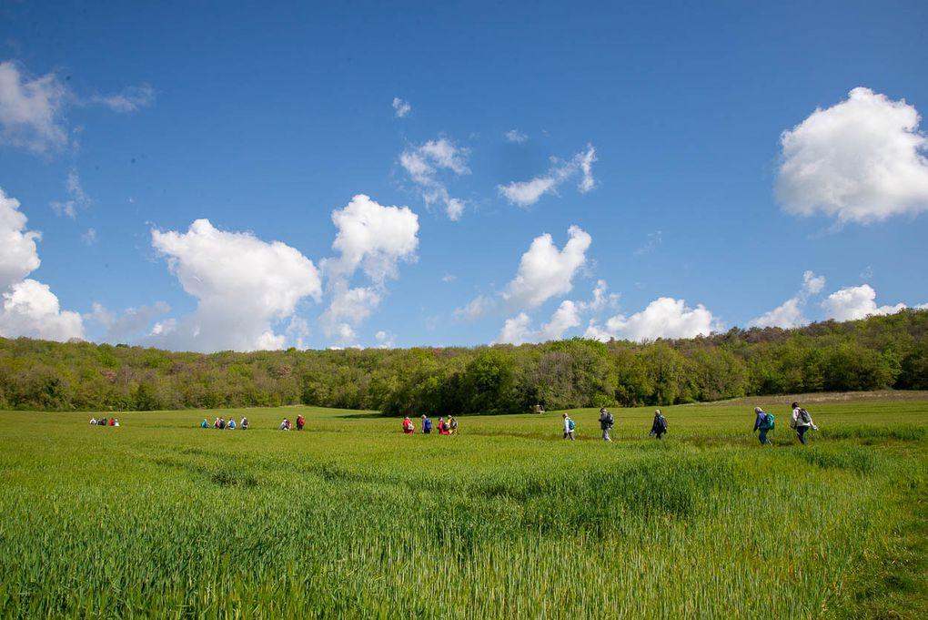 Sortie petite journée du vendredi 7 mai 2021 à Moigny-sur-Ecole