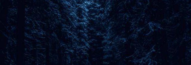 Le Loup bleu - Prologue