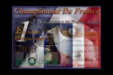 video du championnat de france 2013