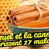 Le miel et la cannelle guérissent 17 maladies - Santé Nutrition