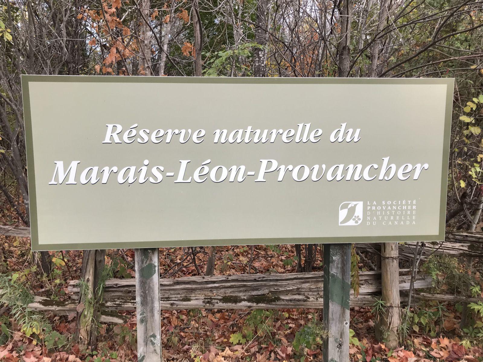 Réserve naturelle du Marais-Léon-Provancher