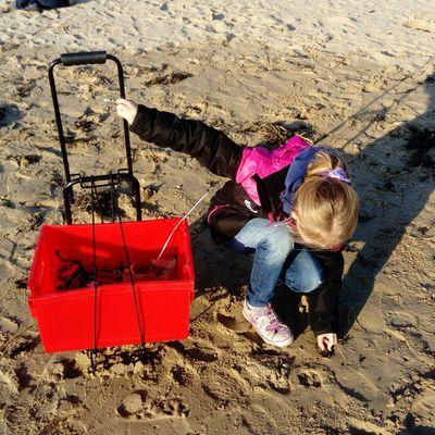 Jeunes sentinelles de l'environnement sur la plage du Veillon à Talmont Vendée