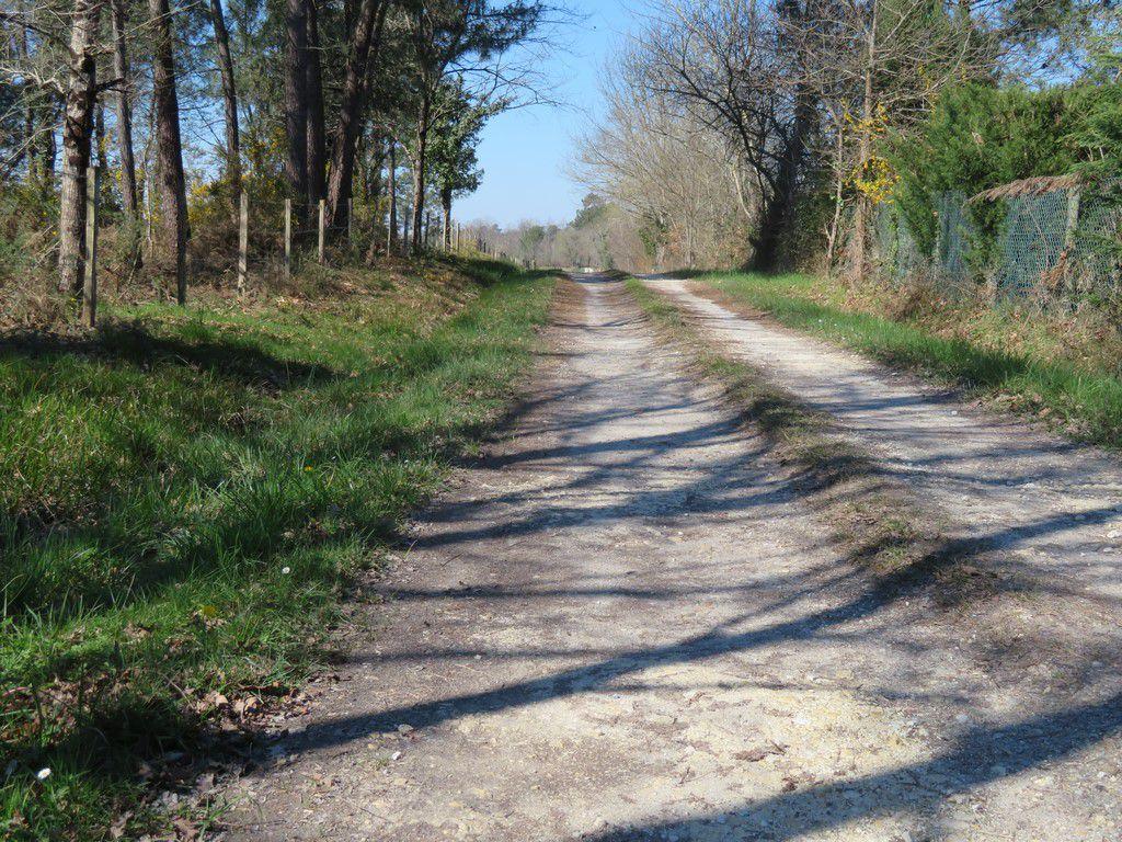 rando jard de bourdillas 12.2 km