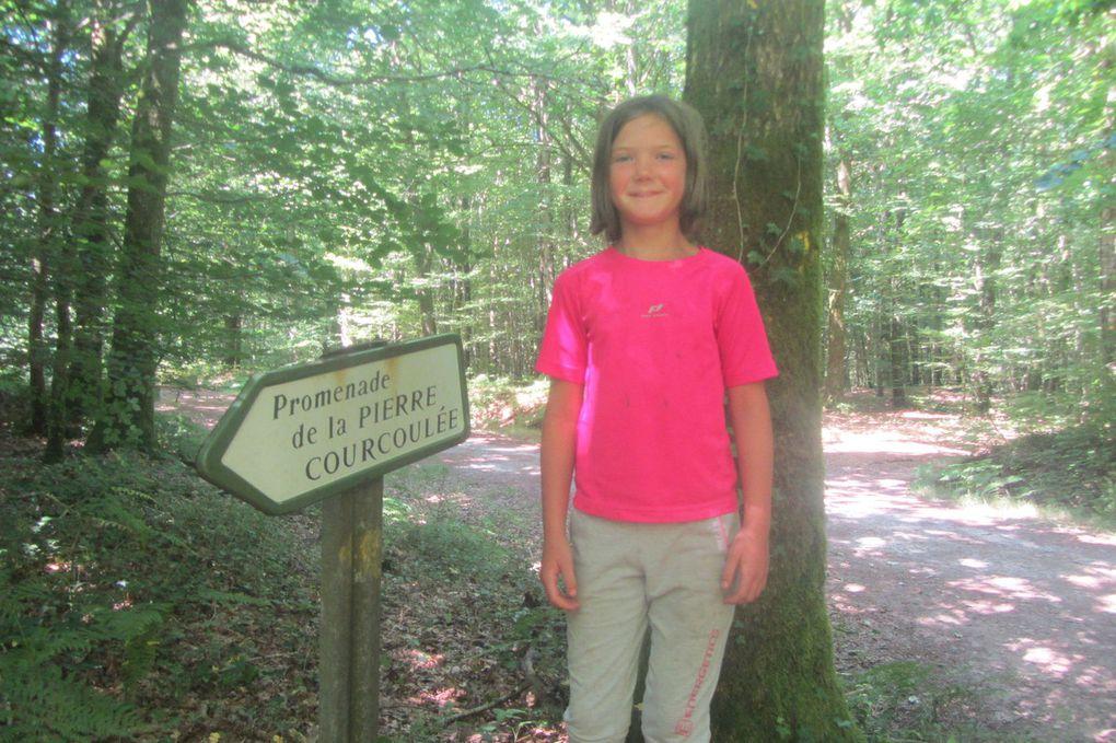 Dernière sortie en forêt pour les élèves de CP, CE1