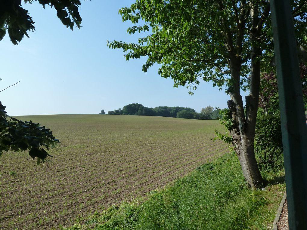 Randonnée en boucle autour de Survilliers-Fosses, 21,6 km.