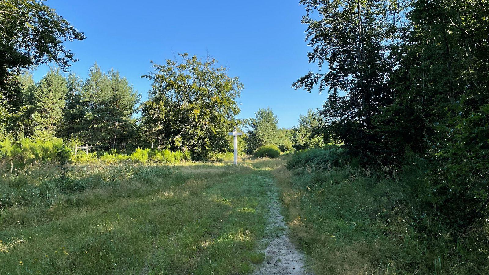 le carrefour par Vaux et Forêts