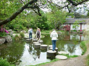 le jardin japonais -