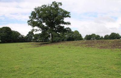 Un cairn du Néolithique à Carhaix ?