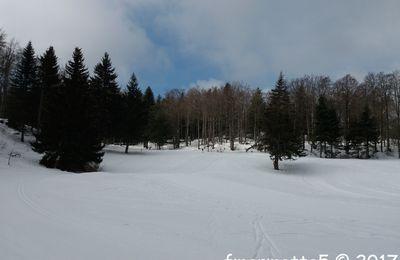 Ski de fond dans les Coulmes, Vercors.