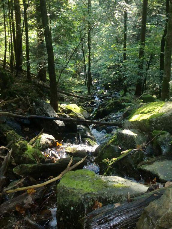 Les cascades se trouvent dans le vallon menant au Schweisel.
