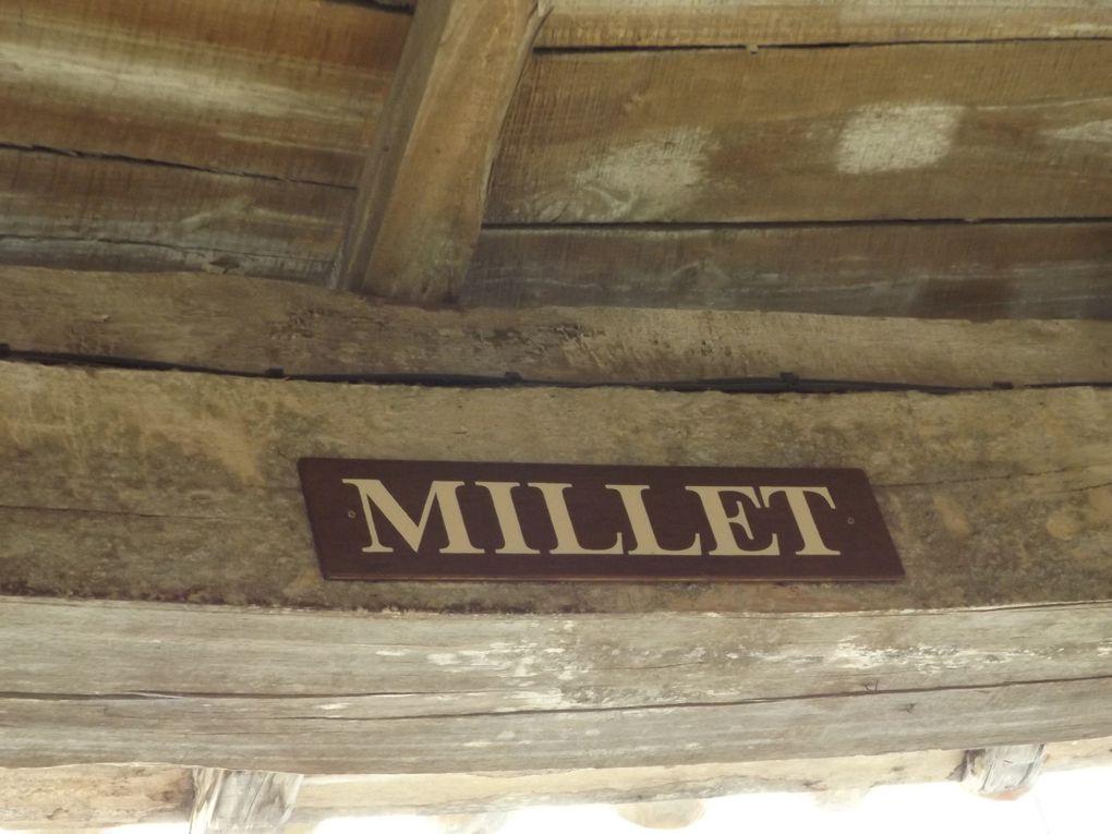 Quelques céréales vendues sous la halle d'Auvillar