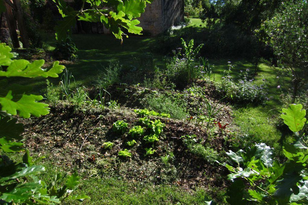 Album - les jardins sur buttes