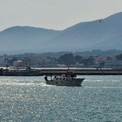 Retour de pêche au port de Sant Carles de la Ràpita (Espagne)